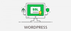 چگونه https (پروتکل امن SSL) را بر روی سایتمان نصب کنیم؛ راهنمای جامع
